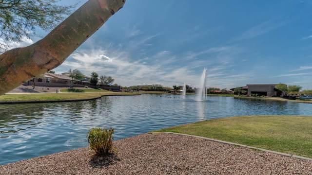 2676 E Augusta Avenue, Gilbert, AZ 85298 (MLS #5978400) :: Arizona Home Group