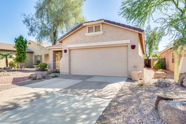 15519 N 171ST Drive, Surprise, AZ 85388 (MLS #5978440) :: Occasio Realty