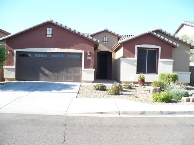 12026 W Chase Lane, Avondale, AZ 85323 (MLS #5978493) :: The AZ Performance Realty Team