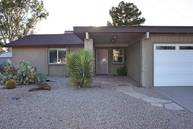 17828 N 10TH Avenue, Phoenix, AZ 85023 (MLS #5978526) :: The Pete Dijkstra Team