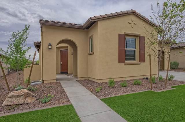 29344 N 132ND Lane, Peoria, AZ 85383 (MLS #5978719) :: Lucido Agency