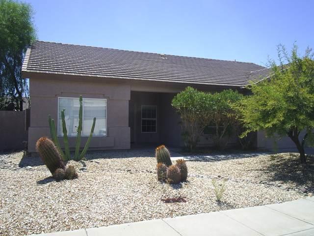 14815 W Dovestar Drive, Surprise, AZ 85374 (MLS #5978720) :: Team Wilson Real Estate