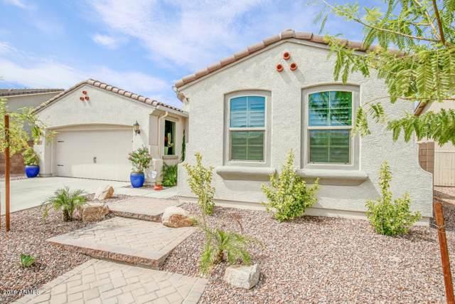 9011 W Diana Avenue, Peoria, AZ 85345 (MLS #5978732) :: Conway Real Estate