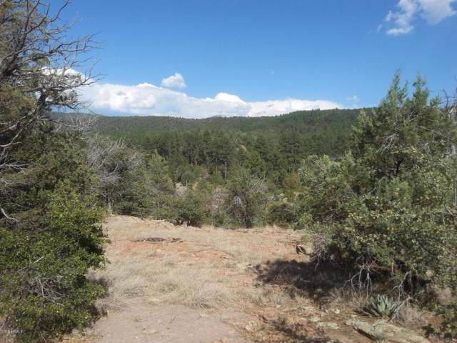 13 W Elk Song Trail, Young, AZ 85554 (MLS #5978748) :: Lucido Agency