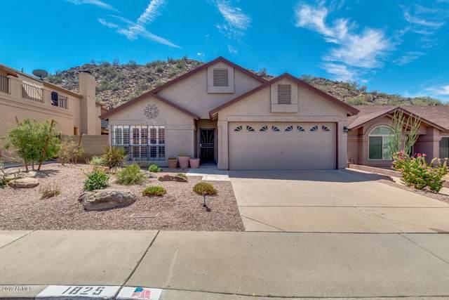 1825 E Behrend Drive, Phoenix, AZ 85024 (MLS #5978826) :: Occasio Realty