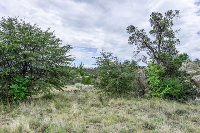 2425 N Ewin Drive, Prescott, AZ 86305 (MLS #5978892) :: Riddle Realty Group - Keller Williams Arizona Realty