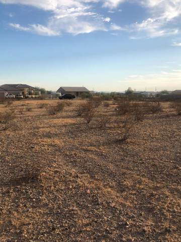30038 W Portland Street, Buckeye, AZ 85396 (MLS #5978896) :: Riddle Realty Group - Keller Williams Arizona Realty