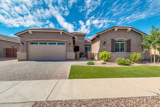 20048 E Kestrel Street, Queen Creek, AZ 85142 (MLS #5978939) :: Conway Real Estate