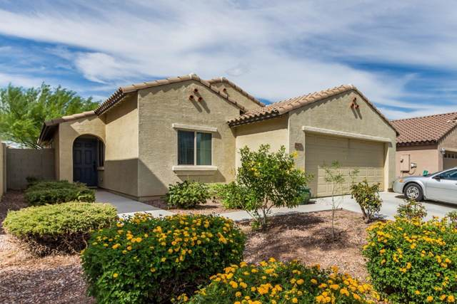18422 W Young Street, Surprise, AZ 85388 (MLS #5978967) :: Riddle Realty Group - Keller Williams Arizona Realty