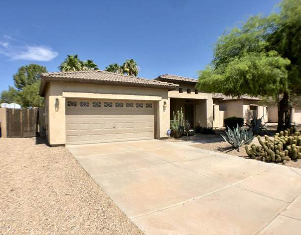 21254 E Roundup Way, Queen Creek, AZ 85142 (MLS #5979013) :: Openshaw Real Estate Group in partnership with The Jesse Herfel Real Estate Group