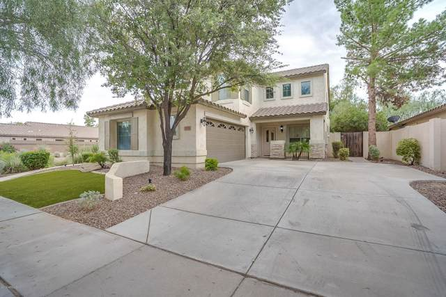 3293 E Elgin Street, Gilbert, AZ 85295 (MLS #5979052) :: The Property Partners at eXp Realty