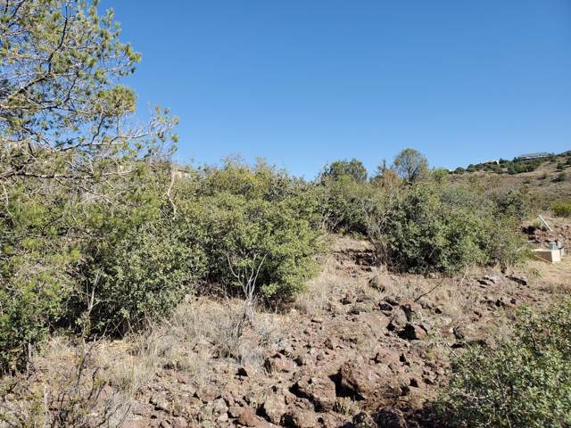 1035 Trouble Shooter Lane, Prescott, AZ 86301 (MLS #5979112) :: Devor Real Estate Associates