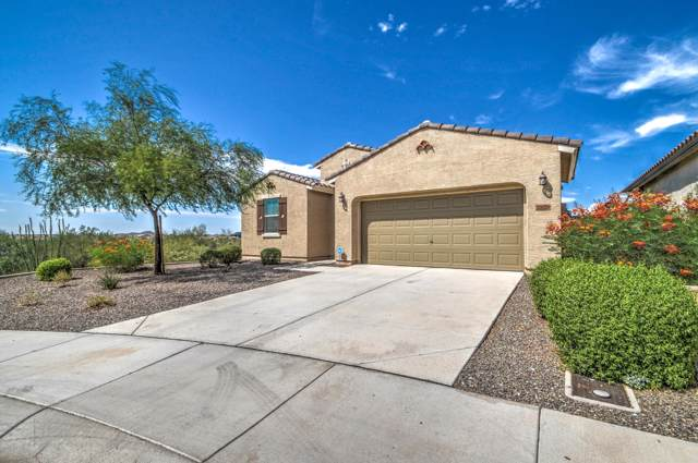 10728 W Brooklite Lane, Peoria, AZ 85383 (MLS #5979121) :: neXGen Real Estate