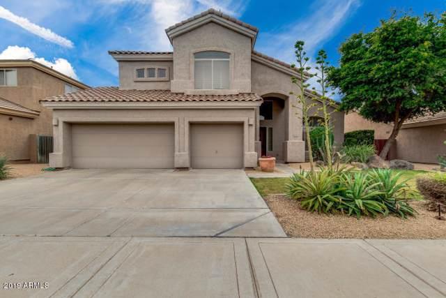 7313 E Tailfeather Drive, Scottsdale, AZ 85255 (MLS #5979126) :: The Ford Team