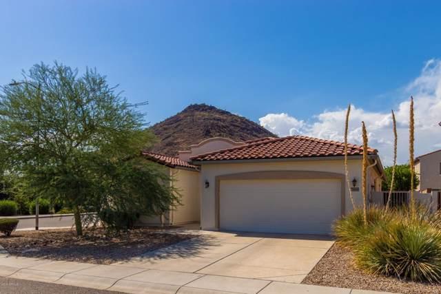 25504 N 54TH Drive, Phoenix, AZ 85083 (MLS #5979150) :: The Laughton Team