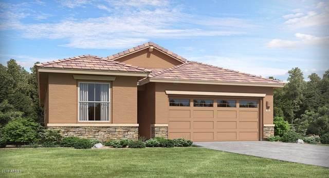 9246 W Meadowbrook Avenue, Phoenix, AZ 85037 (MLS #5979189) :: Conway Real Estate