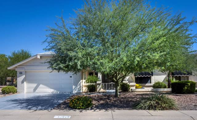 13619 W Greenview Drive, Sun City West, AZ 85375 (MLS #5979206) :: The Kenny Klaus Team