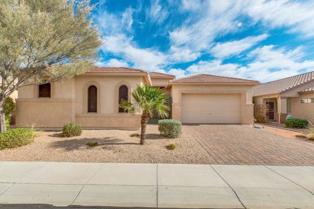 18235 W Stinson Drive, Surprise, AZ 85374 (MLS #5979411) :: Kepple Real Estate Group