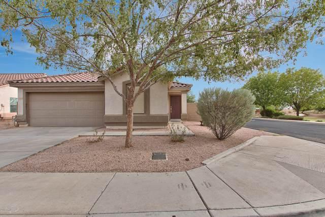 11419 E Flower Avenue, Mesa, AZ 85208 (MLS #5979552) :: Homehelper Consultants