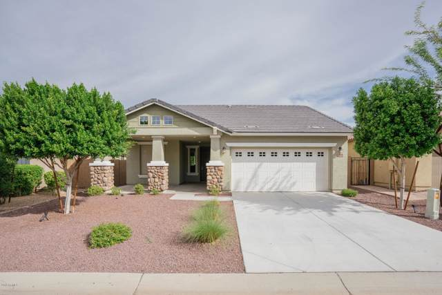 7678 W Molly Drive, Peoria, AZ 85383 (MLS #5979571) :: The Everest Team at eXp Realty