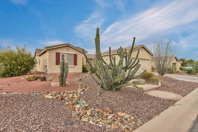 42996 W Whimsical Drive, Maricopa, AZ 85138 (MLS #5979605) :: Brett Tanner Home Selling Team