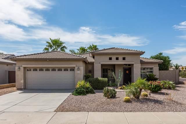 21209 E Stirrup Street, Queen Creek, AZ 85142 (MLS #5979631) :: The Daniel Montez Real Estate Group