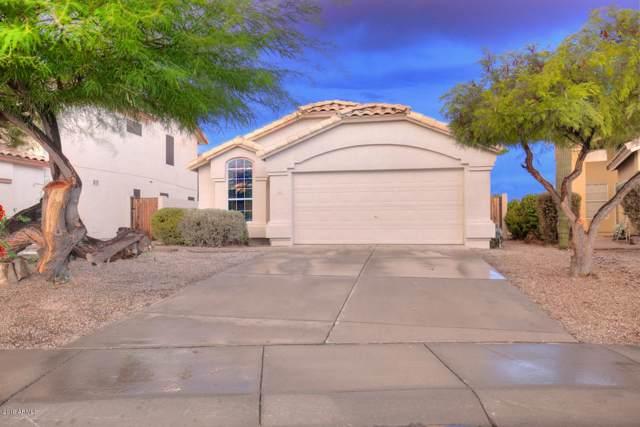 985 N Joshua Tree Lane, Gilbert, AZ 85234 (MLS #5979638) :: Lifestyle Partners Team