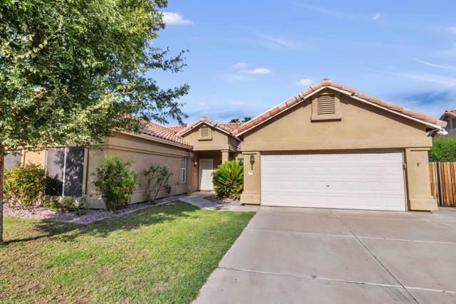 714 N Yucca Street, Chandler, AZ 85224 (MLS #5979726) :: The Daniel Montez Real Estate Group