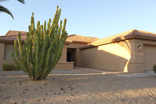 10234 E Champagne Drive, Chandler, AZ 85248 (MLS #5979794) :: Riddle Realty Group - Keller Williams Arizona Realty