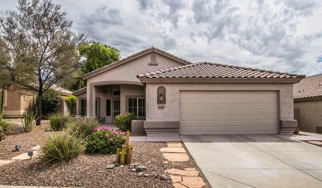 16045 S 18TH Avenue, Phoenix, AZ 85045 (MLS #5979880) :: Yost Realty Group at RE/MAX Casa Grande
