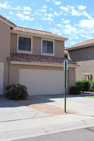 4123 E Cassia Way, Phoenix, AZ 85044 (MLS #5979891) :: Occasio Realty