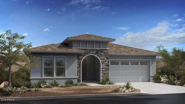 308 E Balao Drive, Phoenix, AZ 85085 (MLS #5979970) :: Brett Tanner Home Selling Team