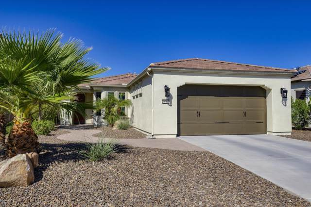 28582 N 127th Lane, Peoria, AZ 85383 (MLS #5979999) :: The Laughton Team