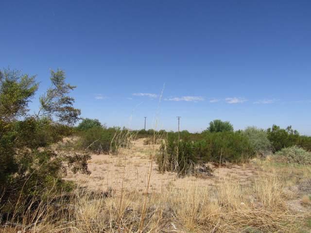 396 N Tejon Road, Maricopa, AZ 85139 (MLS #5980119) :: Occasio Realty