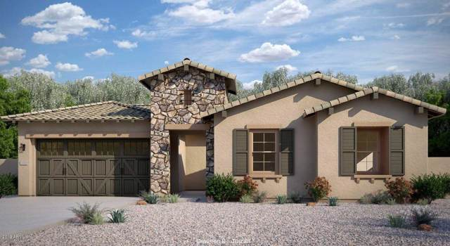 9426 W Daley Lane, Peoria, AZ 85383 (MLS #5980149) :: Brett Tanner Home Selling Team