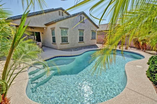 11062 E Sheridan Avenue, Mesa, AZ 85212 (MLS #5980335) :: Yost Realty Group at RE/MAX Casa Grande
