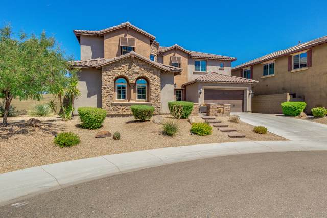 3650 E Sinclair Street, Phoenix, AZ 85050 (MLS #5980340) :: Yost Realty Group at RE/MAX Casa Grande