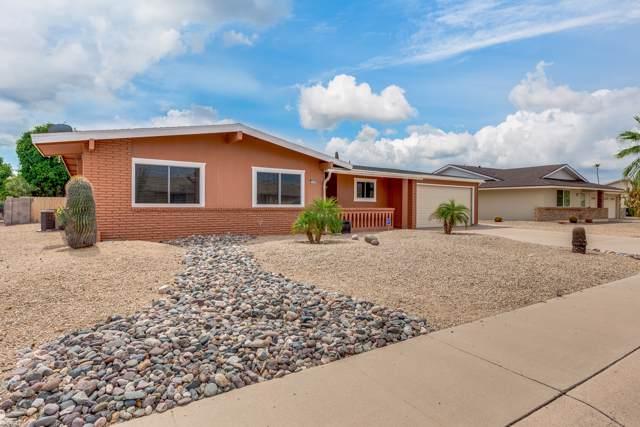 11025 W Cheryl Drive, Sun City, AZ 85351 (MLS #5980343) :: Brett Tanner Home Selling Team