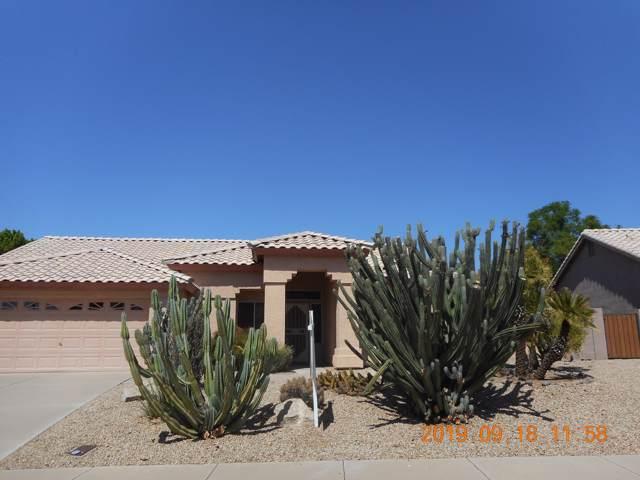 8544 W Acapulco Lane, Peoria, AZ 85381 (MLS #5980371) :: The Laughton Team
