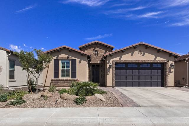 808 E Sugar Apple Way, San Tan Valley, AZ 85140 (MLS #5980382) :: Yost Realty Group at RE/MAX Casa Grande