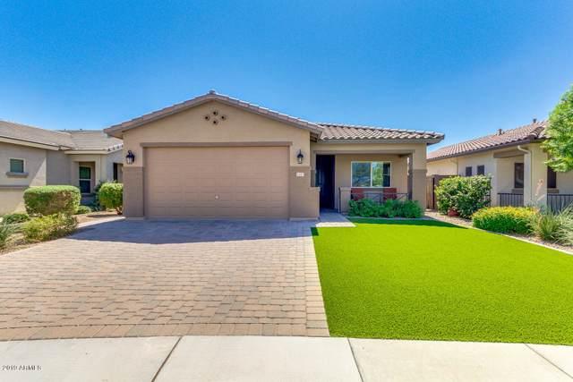 1347 W Rubber Tree Court, Queen Creek, AZ 85140 (MLS #5980399) :: Revelation Real Estate