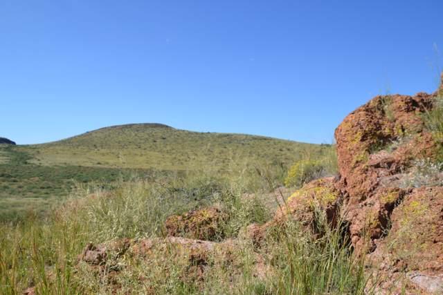 Lot 207 Ash Creek Ranch, Pearce, AZ 85625 (MLS #5980411) :: Brett Tanner Home Selling Team