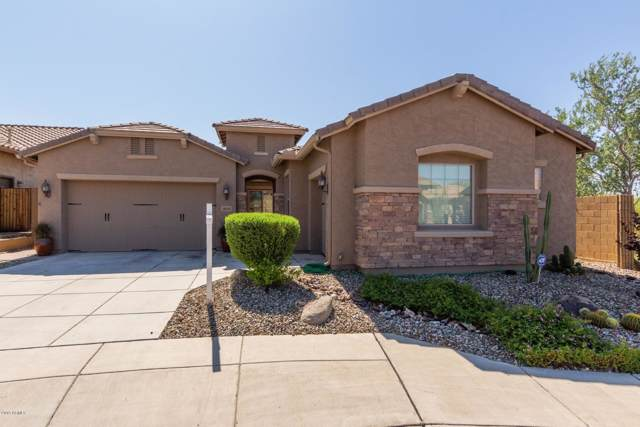 2033 W Steed Ridge, Phoenix, AZ 85085 (MLS #5980635) :: The Laughton Team