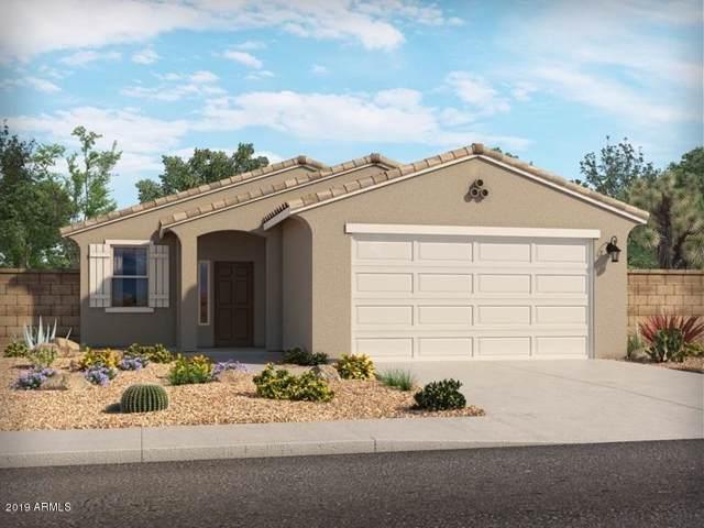 289 W Chapawee Trail, San Tan Valley, AZ 85140 (MLS #5980650) :: Yost Realty Group at RE/MAX Casa Grande