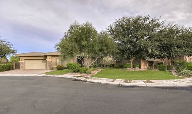 5311 S Big Horn Place, Chandler, AZ 85249 (MLS #5980758) :: Riddle Realty Group - Keller Williams Arizona Realty