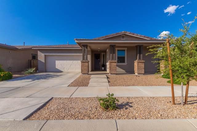 22524 E Duncan Street, Queen Creek, AZ 85142 (MLS #5980862) :: Occasio Realty