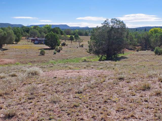 TBD W Sunflower Drive, Payson, AZ 85541 (MLS #5980870) :: Devor Real Estate Associates