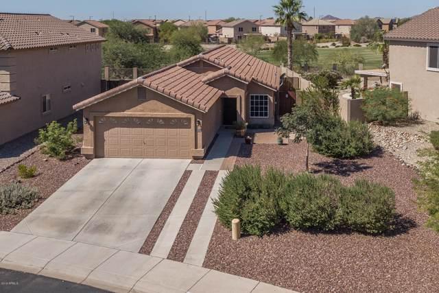 224 N 224TH Lane, Buckeye, AZ 85326 (MLS #5981052) :: The Property Partners at eXp Realty