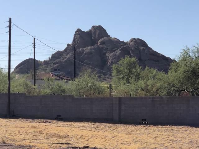 2345 N 55TH Street, Phoenix, AZ 85008 (MLS #5981159) :: The Property Partners at eXp Realty