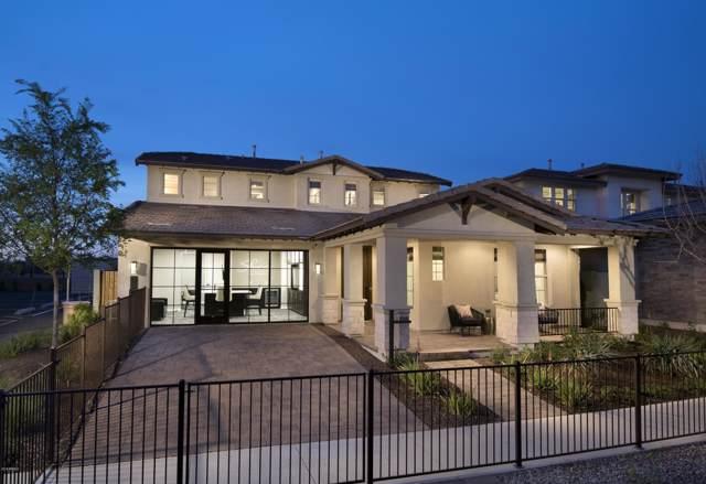 3943 E Harrison Street, Gilbert, AZ 85295 (MLS #5981181) :: Santizo Realty Group